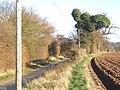 Tye Lane, looking east - geograph.org.uk - 633466.jpg