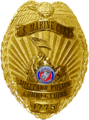 Marine Corps Military Police Corrections Badge