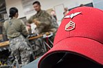 US Army Rigger red hat.jpg