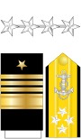 US Navy O10 insignia.svg