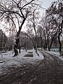 Ufa, Republic of Bashkortostan, Russia - panoramio (324).jpg