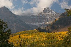 Uinta-national-forest-banner02.jpg