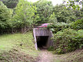 Underpass beneath the A337 connecting Spaniards Hole to Whitley Wood, New Forest - geograph.org.uk - 43415.jpg