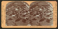 Union Stock Yards (stockyards), Texas cattle, Chicago, Ill., U.S.A, from Robert N. Dennis collection of stereoscopic views.png