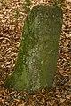Unterhölzer Wald-3532-IridientEdit.jpg