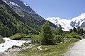 Vadret da Morteratsch - panoramio (33).jpg
