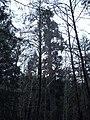 Veitch Viking - panoramio.jpg
