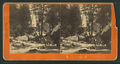 Vernal Fall, from Robert N. Dennis collection of stereoscopic views.png