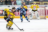 Vienna Capitals vs Fehervar AV19 -69.jpg
