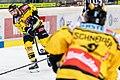 Vienna Capitals vs Fehervar AV19 -73.jpg