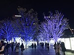 View in front of Hakata Station at night 20181117.jpg