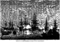 Viggo Fauerholdt - Nordsøeskadrens Ankomst paa Kjøbenhavns Rhed - 1864.png