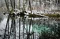 Vilbaste siniallikas talvel.jpg
