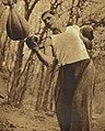 Vilda Jakš 1935.jpg