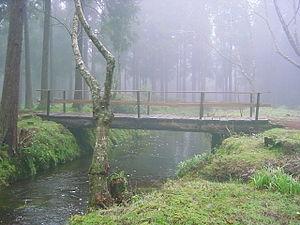 São Bartolomeu de Regatos - A footbridge in the headlands of the Serra de Santa Bárbara, near Viveiros da Falca