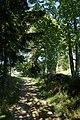 Waldhäuser FRG 005.jpg