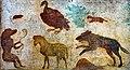 Wall painting - animals - Pompeii (VIII 7 28 - sanctuary of Isis - sacrarium) - Napoli MAN 8533.jpg