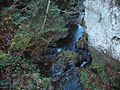 Wandern im November in Todtmoos - panoramio (22).jpg