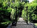 Wasserschloss Laer (13).JPG