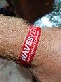 Waves Vienna 2018 wristband.jpg