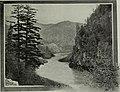Western field (1905) (14779056622).jpg