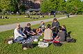 Wikimedia Sverige-picknick June 2015 01.jpg
