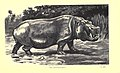Wild beasts and their ways (Plate 14) (6505686011).jpg
