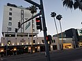 Wilshire Road and buildings 02.jpg