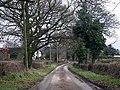 Winding lane - geograph.org.uk - 1074491.jpg