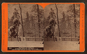 Winter at Cresson, summer resort, on the P. R. R. among the wilds of the Alleghenies, by R. A. Bonine 6.jpg