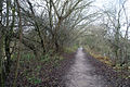 Winter path Attenborough - geograph.org.uk - 628591.jpg