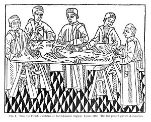 Woodcut; five men at dissection on trestle table. Wellcome L0007119.jpg