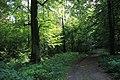 Wrześniowy spacer - panoramio (1).jpg