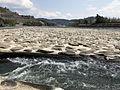 Yamada Weir on Chikugogawa River 2.jpg