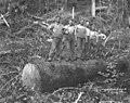 Yarding out crew, Coats-Fordney Lumber Company, ca 1916 (KINSEY 49).jpeg