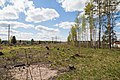 Yaroslavsky District, Yaroslavl Oblast, Russia - panoramio (18).jpg