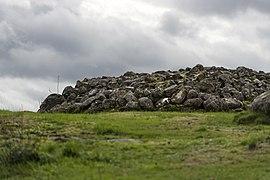 Yttra Berg Gällared odlingsområde01.jpg