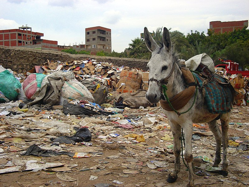 Trash is a huge problem in Egypt. Credit: Wikicommons