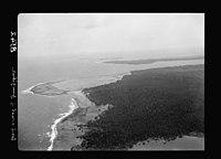 Zanzibar. Air view. Palm groves on western side of the island LOC matpc.17659.jpg