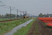 Zuidermeer nl field and train