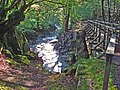 'Girders' (footbridge) across the Esk - geograph.org.uk - 266142.jpg