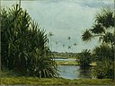 'Hilo Bay' by D. Howard Hitchcock, 1886.jpg