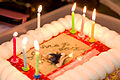 (294-365) Happy Birthday!! (6080505677).jpg