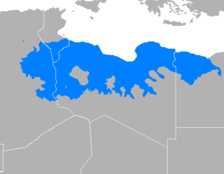dialect of the language as spoken in the North African country