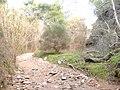 Ρέμα κοκκιναρά 7 - panoramio.jpg