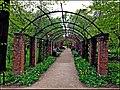 Ботанический сад (Петровский огород) - panoramio (3).jpg