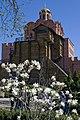 Весна цветы и Золотые ворота.jpg