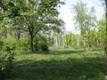 Дендрологічний парк 185.jpg