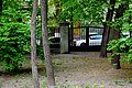 Дендропарк ім. Ак. Богомольця DSC 0724.jpg