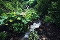 Дземброньський водоспад.jpg